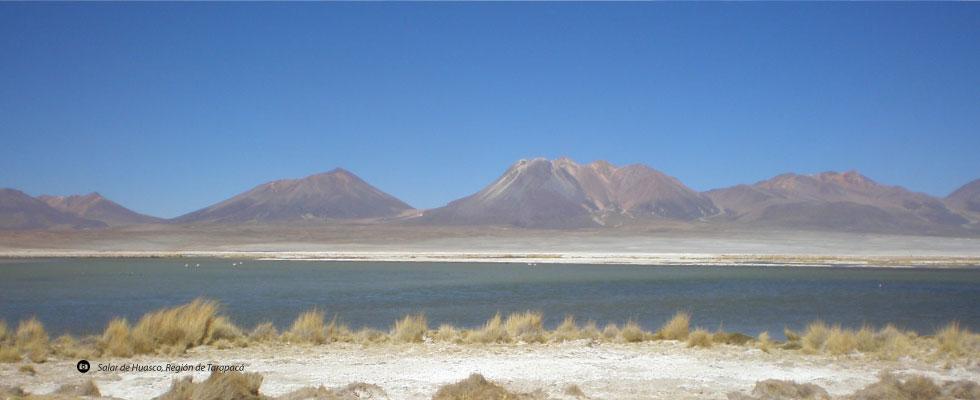 Salar de Huasco, Región de Tarapacá